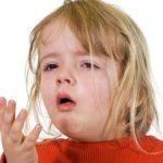 Dióolaj, a téli immunerősítő