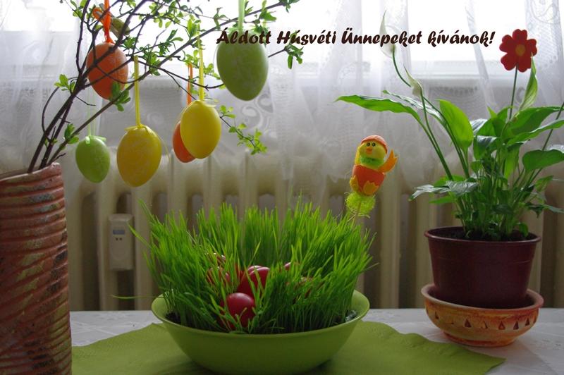 húsvét gastrolaj