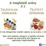 Telített vagy telítetlen zsírsav?